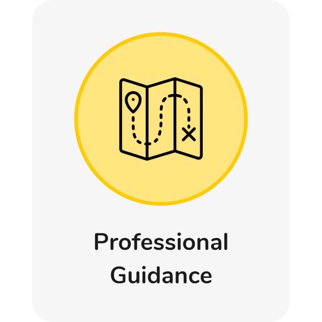 professional guidance and support